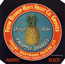 Bishop Hoyt 'Black' Label