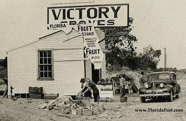 Whaley's Indian River, Victory Groves Photograph