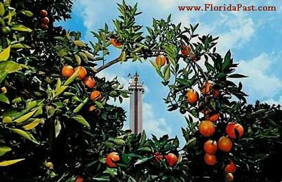 Though the Citrus Tower still stands today, the scenery is of the Past
