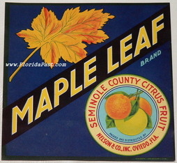 6 3/4' x 6 3/4' MAPLE LEAF LABEL, Seminole County, Oviedo, Florida