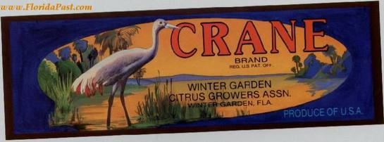 WINTER GARDEN, FLORIDA - CRANE CITRUS LABEL