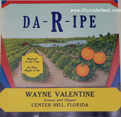 DA-R-IPE - Scarce CENTER HILL, FLORIDA Label