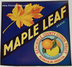 9' x 9' MAPLE LEAF LABEL, OVIEDO, FLORIDA