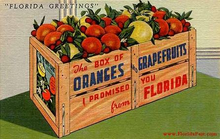 Usually sent to a relative of a FloridaPast Tourist, along with a crate of Oranges or Grape Fruit