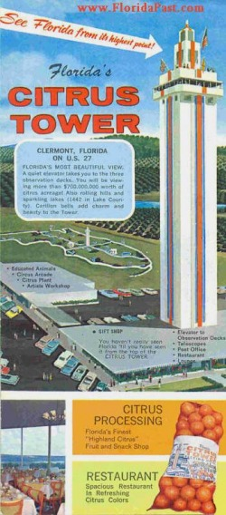 There was a time in FloridaPast when a visitor could view miles of citrus groves from the tower