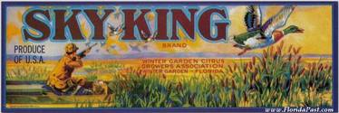 SKY KING CITRUS LABEL - WINTER GARDEN, FLORIDA